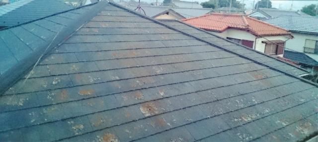 屋根の塗装のベストシーズンは?最適な時期について
